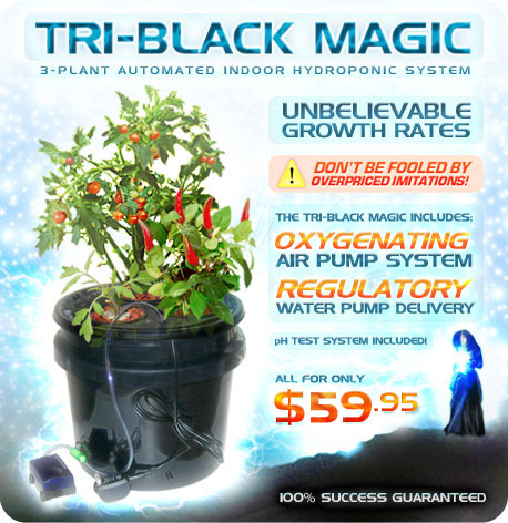 The Tri-Black Magic Hydroponic System