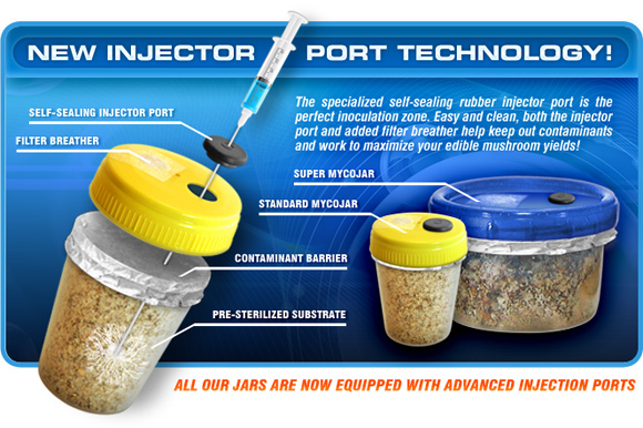 New Injection Port Technology