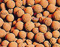 Click here for more information on Hydroton Clay Grow Pebbles